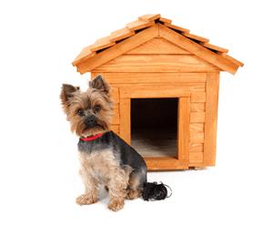 cedardoghouse