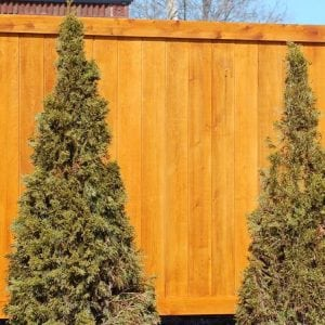 Good Neighbor Privacy Fence Designs